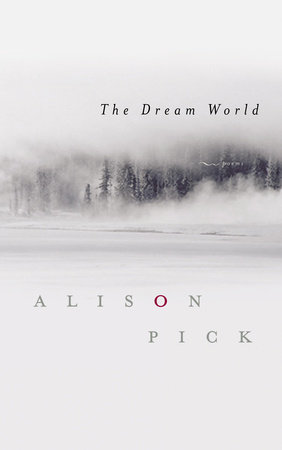 The Dream World by Alison Pick