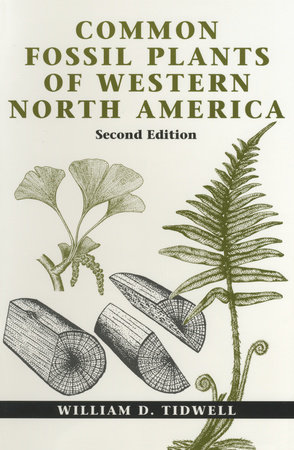 Common Fossil Plants of Western North America, Second Edition by William D. Tidwell