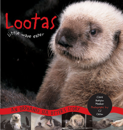 Lootas Little Wave Eater by Clare Hodgson Meeker