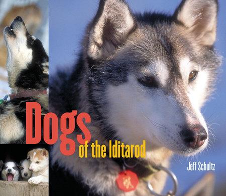 Dogs of the Iditarod by Jeff Schultz