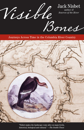 Visible Bones by Jack Nisbet