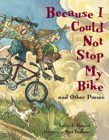 Because I Could Not Stop My Bike by Karen Jo Shapiro
