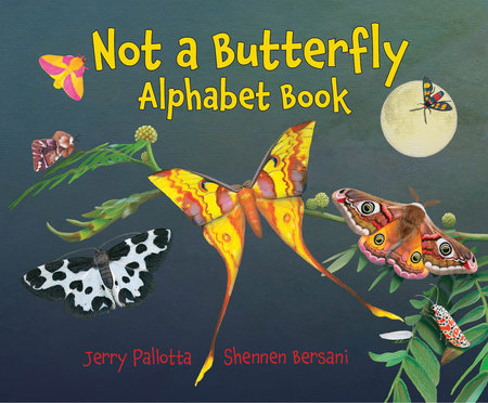 Not a Butterfly Alphabet Book by Jerry Pallotta