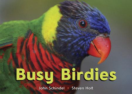 Busy Birdies