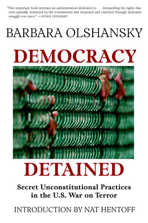 Democracy Detained by Barbara Olshansky