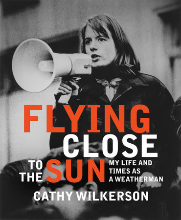 Flying Close to the Sun by Cathy Wilkerson