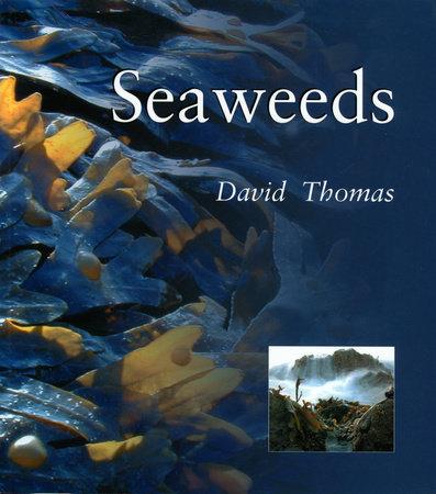 Seaweeds by David N. Thomas