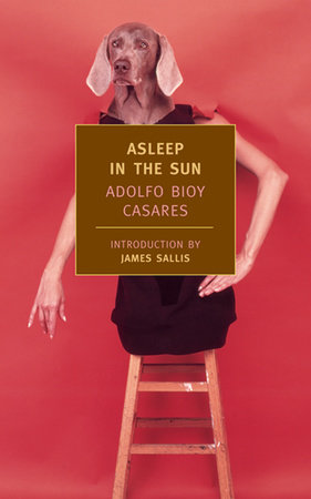Asleep in the Sun by Adolfo Bioy Casares