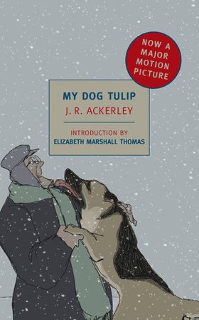 My Dog Tulip by J. R. Ackerley