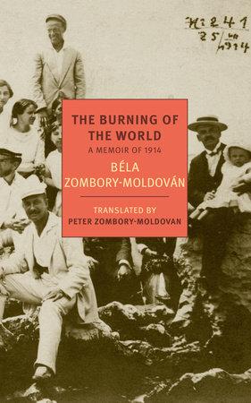 The Burning of the World by Bela Zombory-Moldovan
