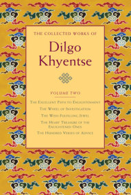 The Collected Works of Dilgo Khyentse, Volume Two