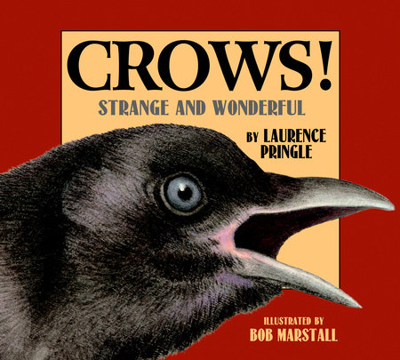 Crows! by Laurence Pringle