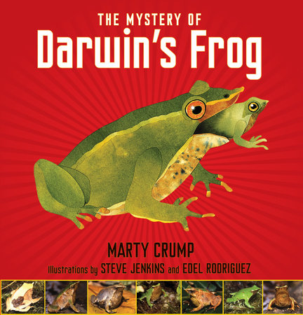 The Mystery of Darwin's Frog by Marty Crump