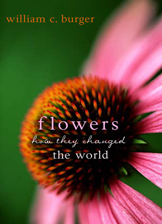Flowers by William C. Burger
