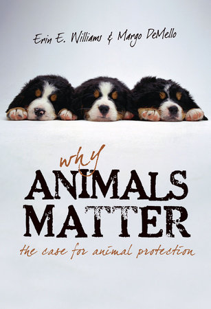Why Animals Matter by Erin E. Williams and Margo Demello