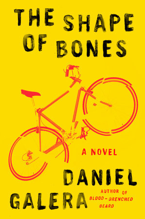 The Shape of Bones Book Cover Picture