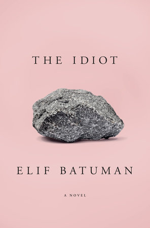 The Idiot Book Cover Picture