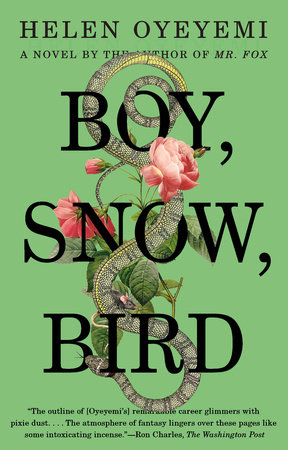 Boy, Snow, Bird Book Cover Picture