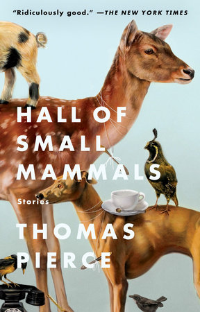 Hall of Small Mammals by Thomas Pierce