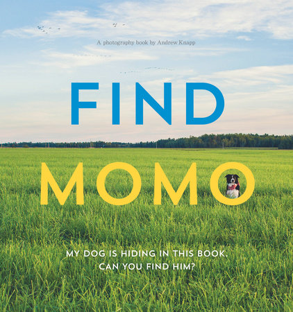 Find Momo by Andrew Knapp