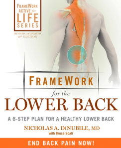 FrameWork for the Lower Back