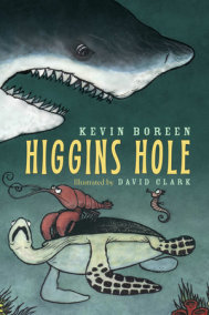 Higgins Hole
