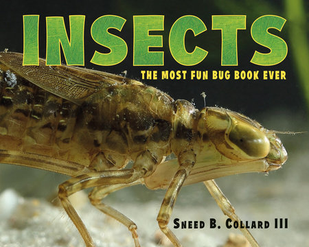 Insects by Sneed B. Collard III