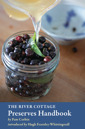 The River Cottage Preserves Handbook by Pam Corbin