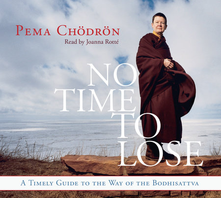 No Time to Lose by Pema Chodron