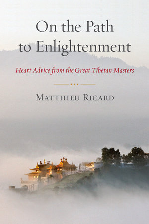 On the Path to Enlightenment by Matthieu Ricard