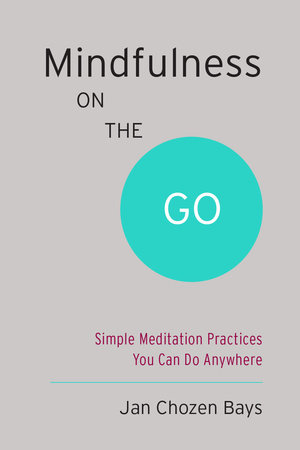 Mindfulness on the Go (Shambhala Pocket Classic) by Jan Chozen Bays