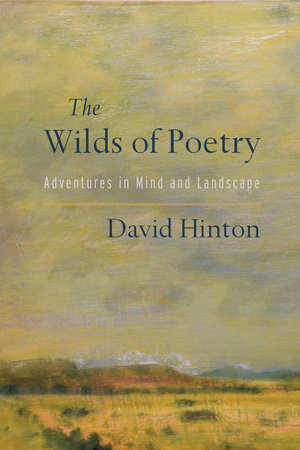 The Wilds of Poetry by David Hinton