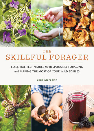 The Skillful Forager