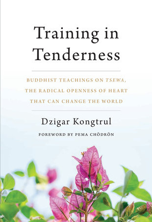 Training in Tenderness by Dzigar Kongtrul