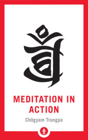 Meditation in Action