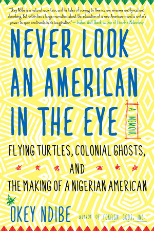 Never Look an American in the Eye by Okey Ndibe
