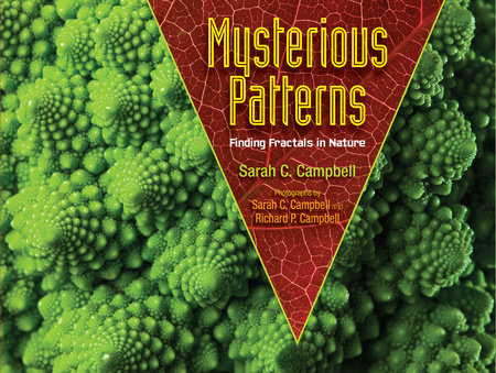 Mysterious Patterns by Sarah C. Campbell