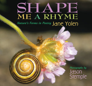 Shape Me a Rhyme