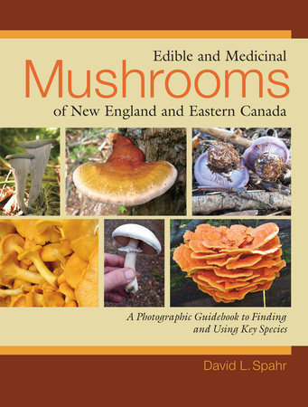 Edible and Medicinal Mushrooms of New England and Eastern Canada by David L. Spahr