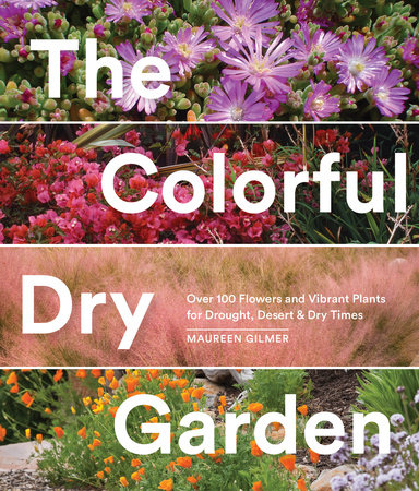 The Colorful Dry Garden by Maureen Gilmer