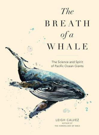The Breath of a Whale by Leigh Calvez