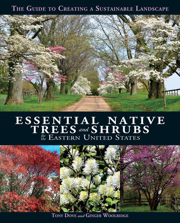 Essential Native Trees and Shrubs for the Eastern United States by Tony Dove and Ginger Woolridge