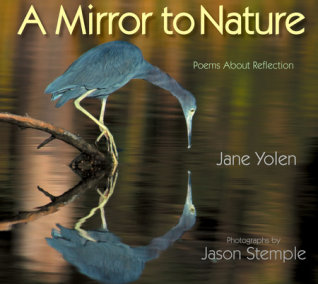 A Mirror to Nature