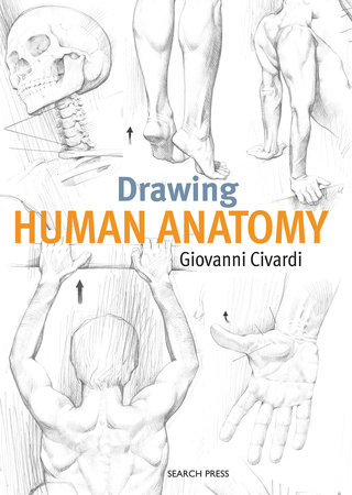 Drawing Human Anatomy by Giovanni Civardi | PenguinRandomHouse.com