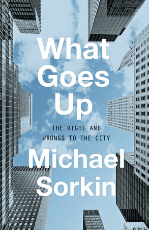 What Goes Up by Michael Sorkin