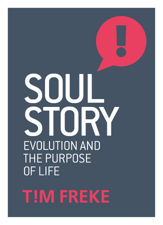Soul Story by Tim Freke