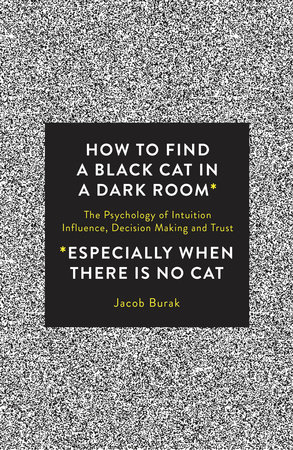 How To Find a Black Cat in a Dark Room by Jacob Burak