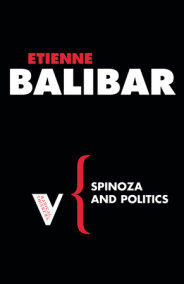 Spinoza and Politics