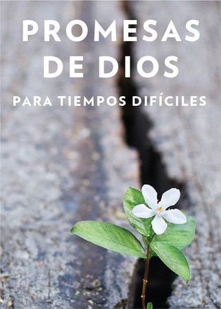 Promesas de Dios para tiempos difíciles / God s Promises when you are hurting