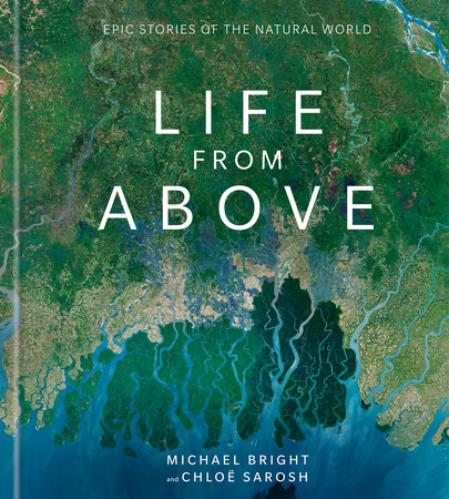 Life from Above by Michael Bright and Chloe Sarosh